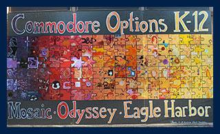 Commador Options School